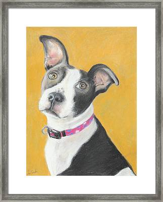 Framed Print featuring the painting Rescued Pit Bull by Jeanne Fischer