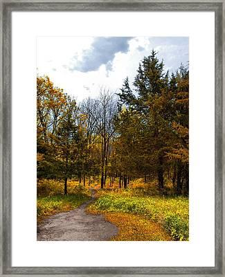 Reserve Framed Print by Tom Druin