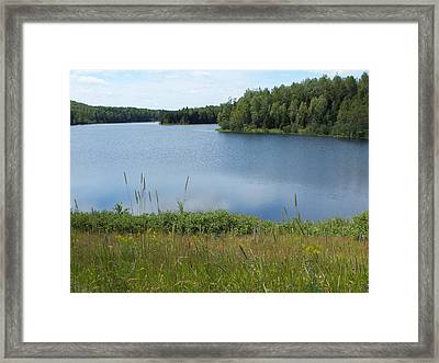 Reservoir 1 Framed Print