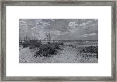 Resilient Presence Framed Print