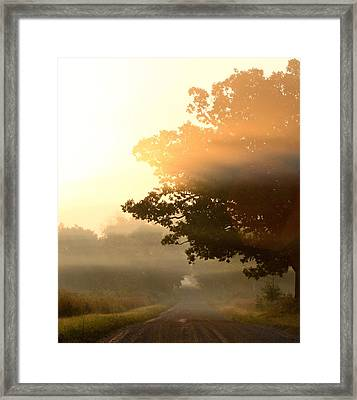 Resonant Framed Print by Sarah Boyd