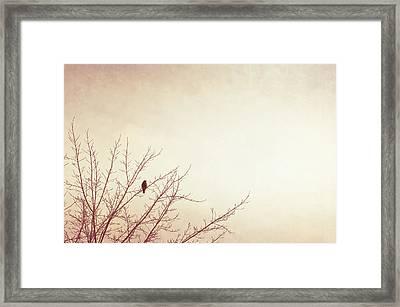 Respite Framed Print by Carolyn Cochrane