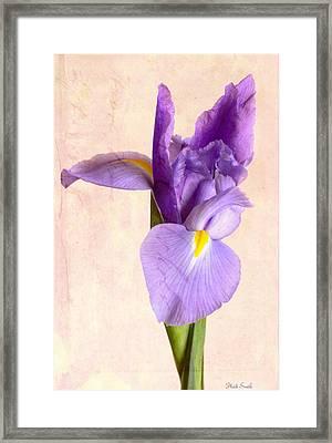Resplendent Framed Print by Heidi Smith