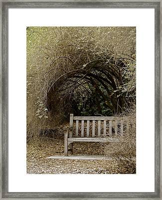 Rest And Reflect Framed Print