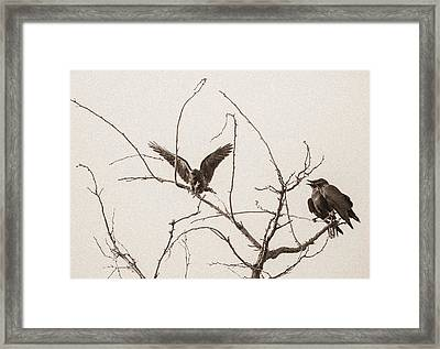 Rest Area II Framed Print by Marie-Dominique Verdier