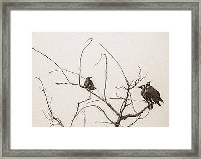 Rest Area IIi Framed Print by Marie-Dominique Verdier