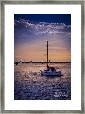 Rest Day Framed Print by Marvin Spates