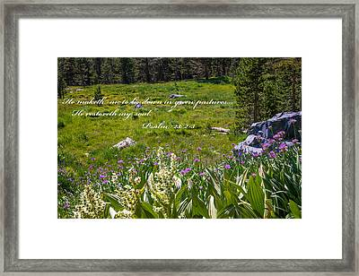 Rest For The Soul Framed Print by Lynn Bauer