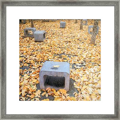 rest in fall IV Framed Print by Hannes Cmarits