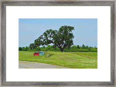 Rest In Peace 1 Framed Print by Alys Caviness-Gober