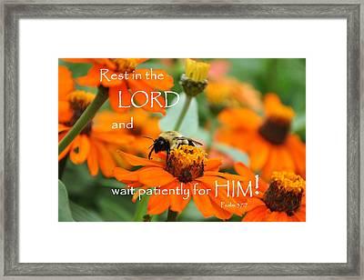 Rest In The Lord Framed Print by Barbara Stellwagen
