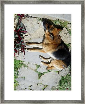 Framed Print featuring the photograph Rest by Ramona Matei