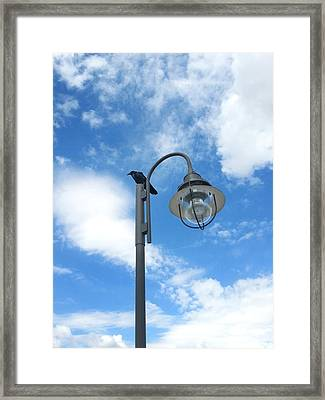 Rest Stop For The Harbinger Framed Print by Lon Casler Bixby