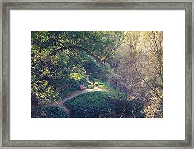Rest Your Soul Framed Print by Laurie Search