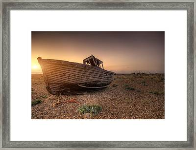Rested Six Framed Print by Jason Green