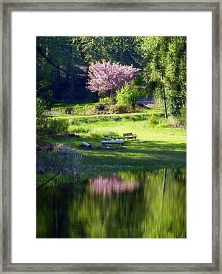 Restful Place Framed Print by Lori Seaman