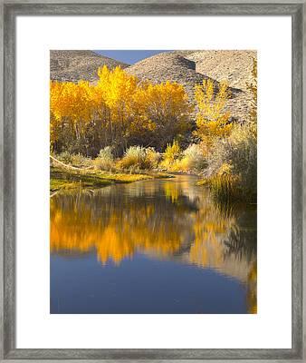 Restful Waters Framed Print