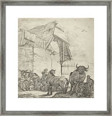Resting Cattle On A Farm, Jan Van Ossenbeeck Framed Print by Jan Van Ossenbeeck And Giovanni Giacomo Rossi