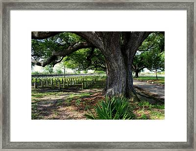 Resting In The Shade Framed Print