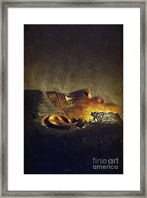 Resting Place Framed Print by Margie Hurwich