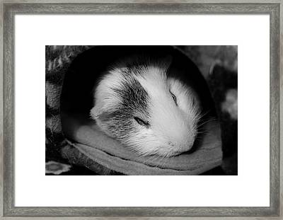Restless Sleep Framed Print by Luke Moore