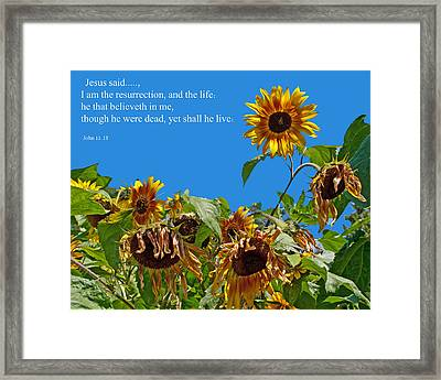 Resurrected Life Framed Print by Tikvah's Hope