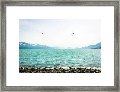 Resurrection Bay With Sea Gulls Framed Print