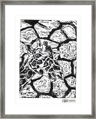 Reticulated Giraffe Framed Print by Monica Warhol