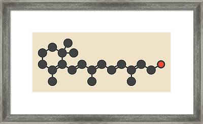 Retinol Molecule Framed Print
