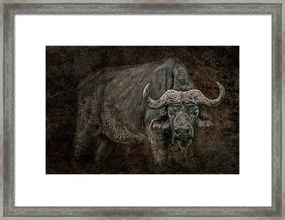 Framed Print featuring the photograph Retired General by Mike Gaudaur