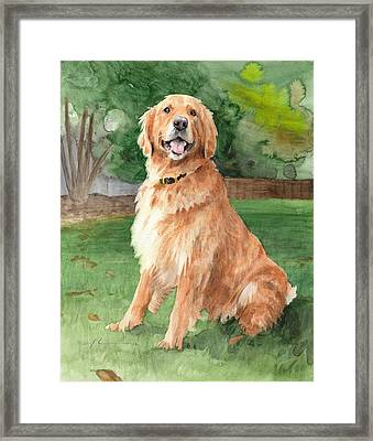 Retriever Watercolor Portrait Framed Print by Mike Theuer