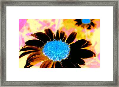 Retro Daisy Framed Print by Jacqueline McReynolds