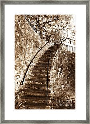 Retro Stairs In Savannah Framed Print