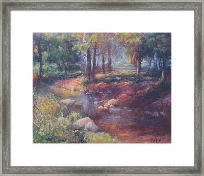 Return To Shupp's Grove Framed Print
