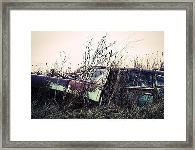 Return To The Earth  Framed Print by Off The Beaten Path Photography - Andrew Alexander