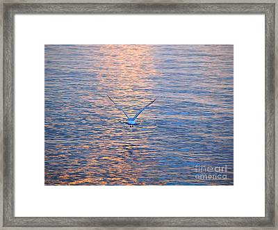 Returning  Framed Print
