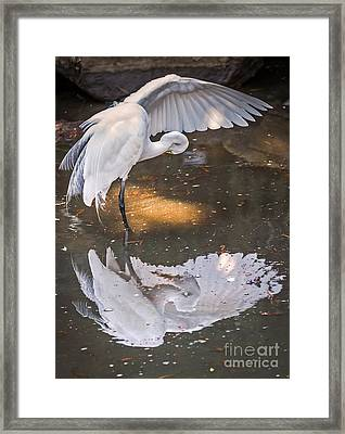 Revealed Close-up Framed Print