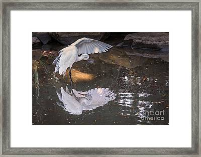 Revealed Landscape Framed Print
