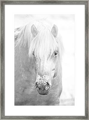 Revelation... Framed Print by Nina Stavlund