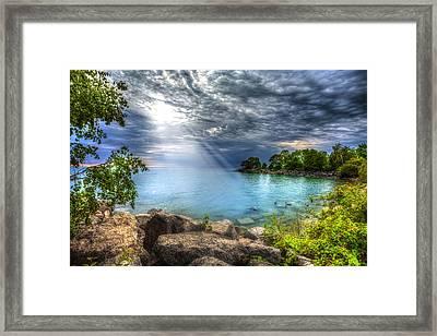 Reverie Framed Print by Anthony Rego