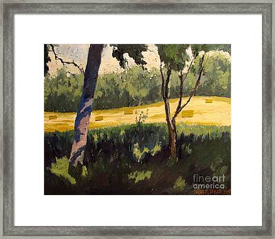 Reworked Rolling Wheat Framed Print by Charlie Spear