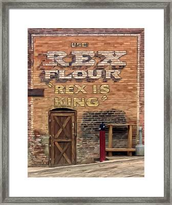 Rex Is King Framed Print by Michael Pickett