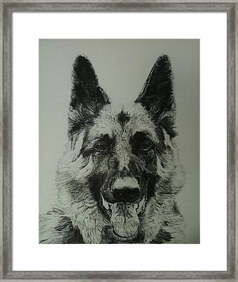 Rex Framed Print by Reppard Powers