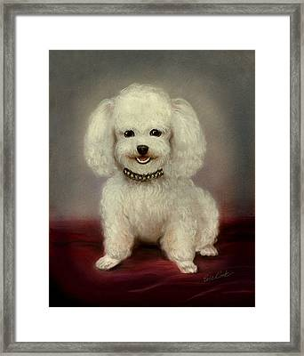 Cutest Poodle Framed Print by Evie Cook