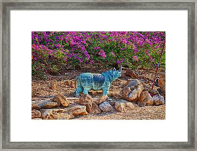 Rhino And Bougainvillea Framed Print by Omaste Witkowski