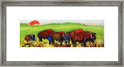 Rhino Buffalo Framed Print