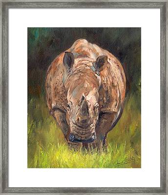 Rhino Framed Print by David Stribbling
