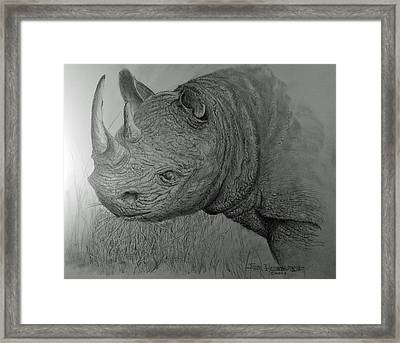 Rhinoceras Framed Print by Jim Hubbard