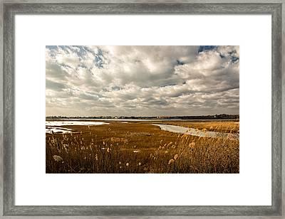 Rhode Island Marshes 1 Framed Print by Nancy De Flon