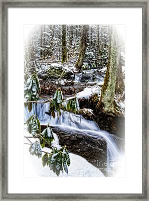 Rhododendron Waterfall Winter Framed Print by Thomas R Fletcher